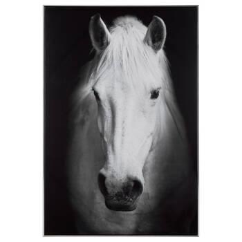 Majestic Horse Framed Art