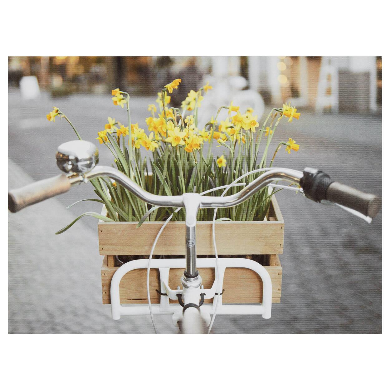 Tableau imprimé d'un vélo