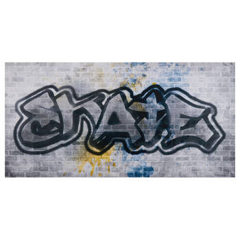 Skate Graffiti Printed Canvas