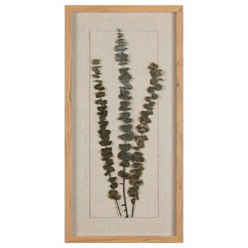 Dried Eucaluptus Canvas