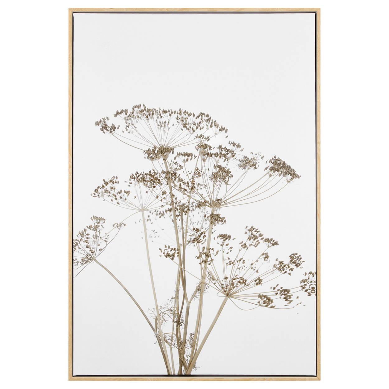 Tableau encadré fleurs séchées