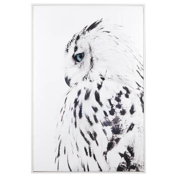 Shy Owl Printed Framed Art