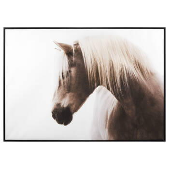 Shy Horse Framed Art
