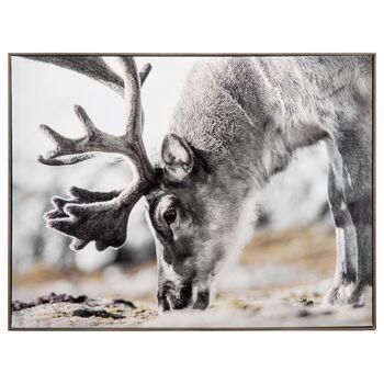 Eating Reindeer Printed Framed Art