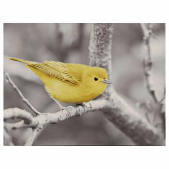 Bird on a Branch Printed Canvas