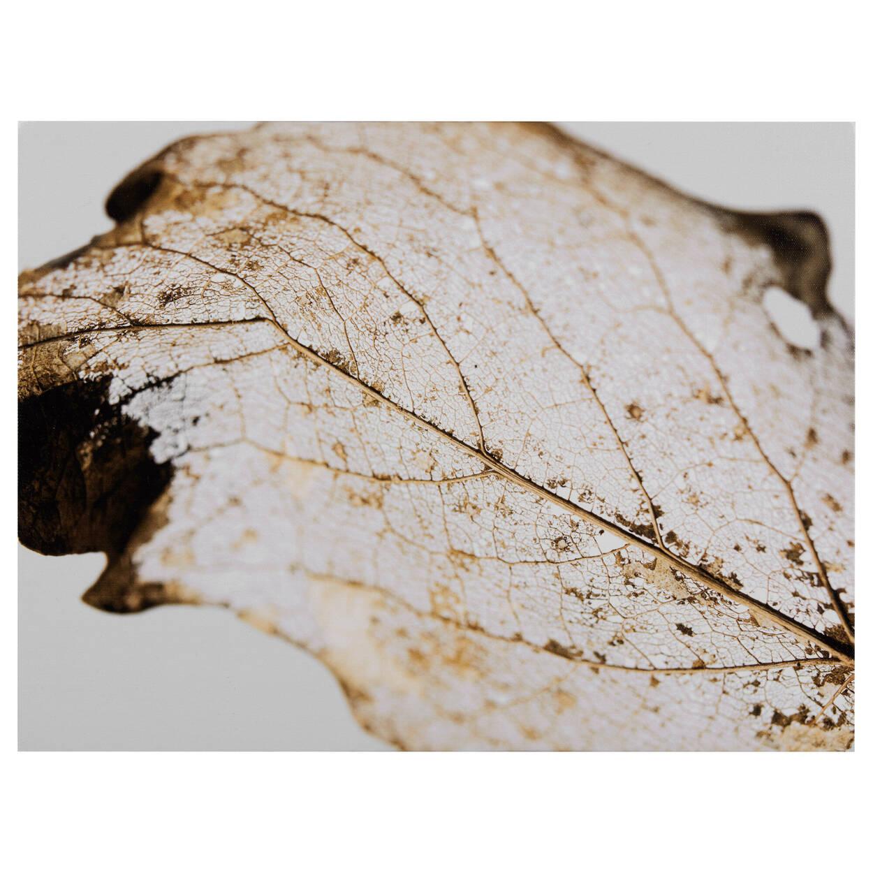 Golden Leaf Printed Canvas
