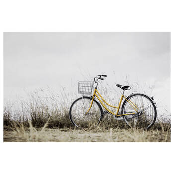 Summer Bicycle Printed Canvas