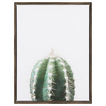 Cadre imprimé cactus