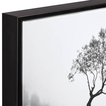 Misty Morning Framed Art