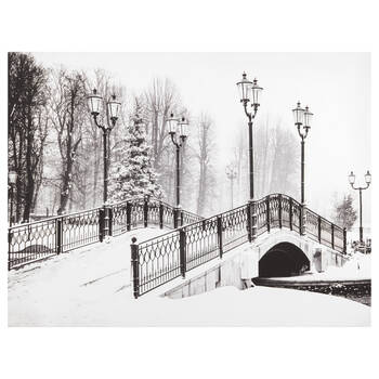 Winter Bridge Printed Canvas