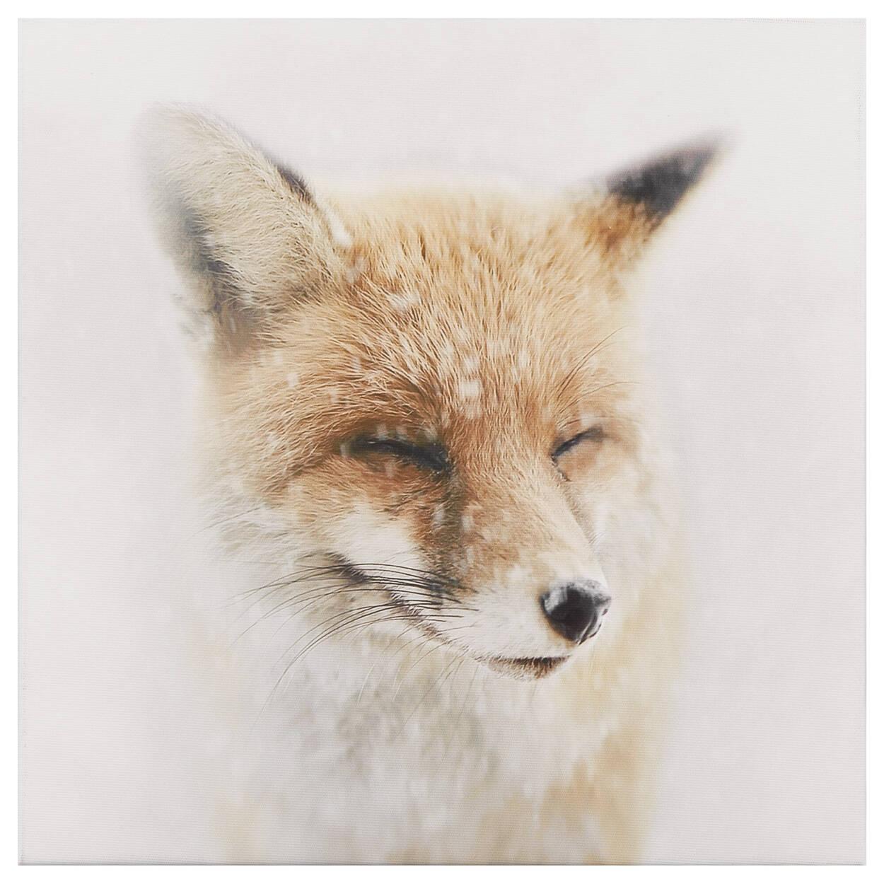 Smiling Fox Printed Canvas