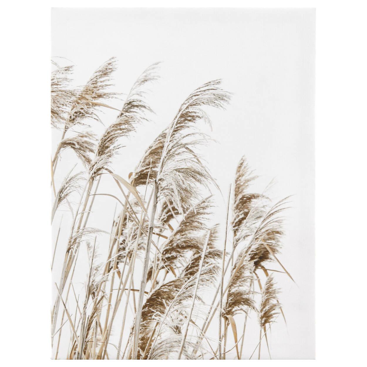 Tableau imprimé d'un champ de blé