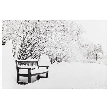 Winter Bench Printed Canvas