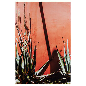 Aloe Printed Canvas