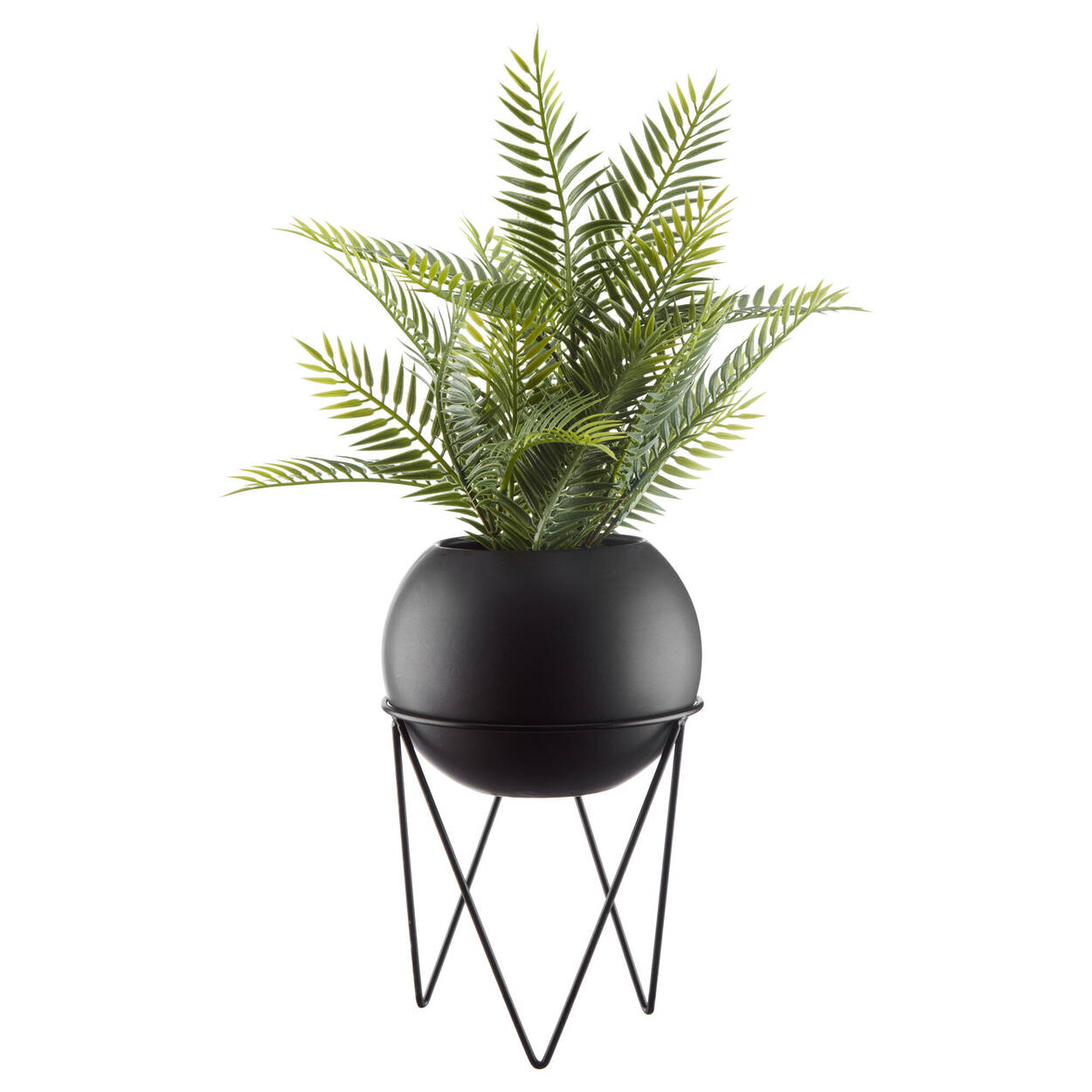Fern in Hairpin-Legs Planter
