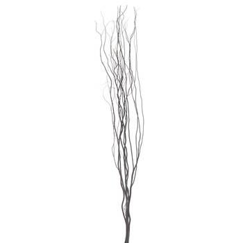 Branches de saule