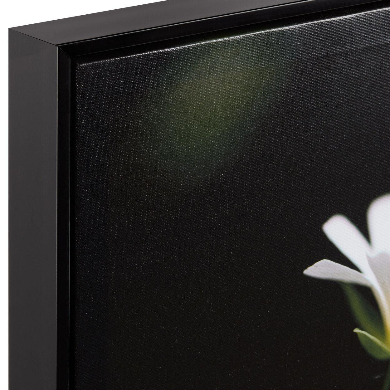 White Petals Printed Framed Art