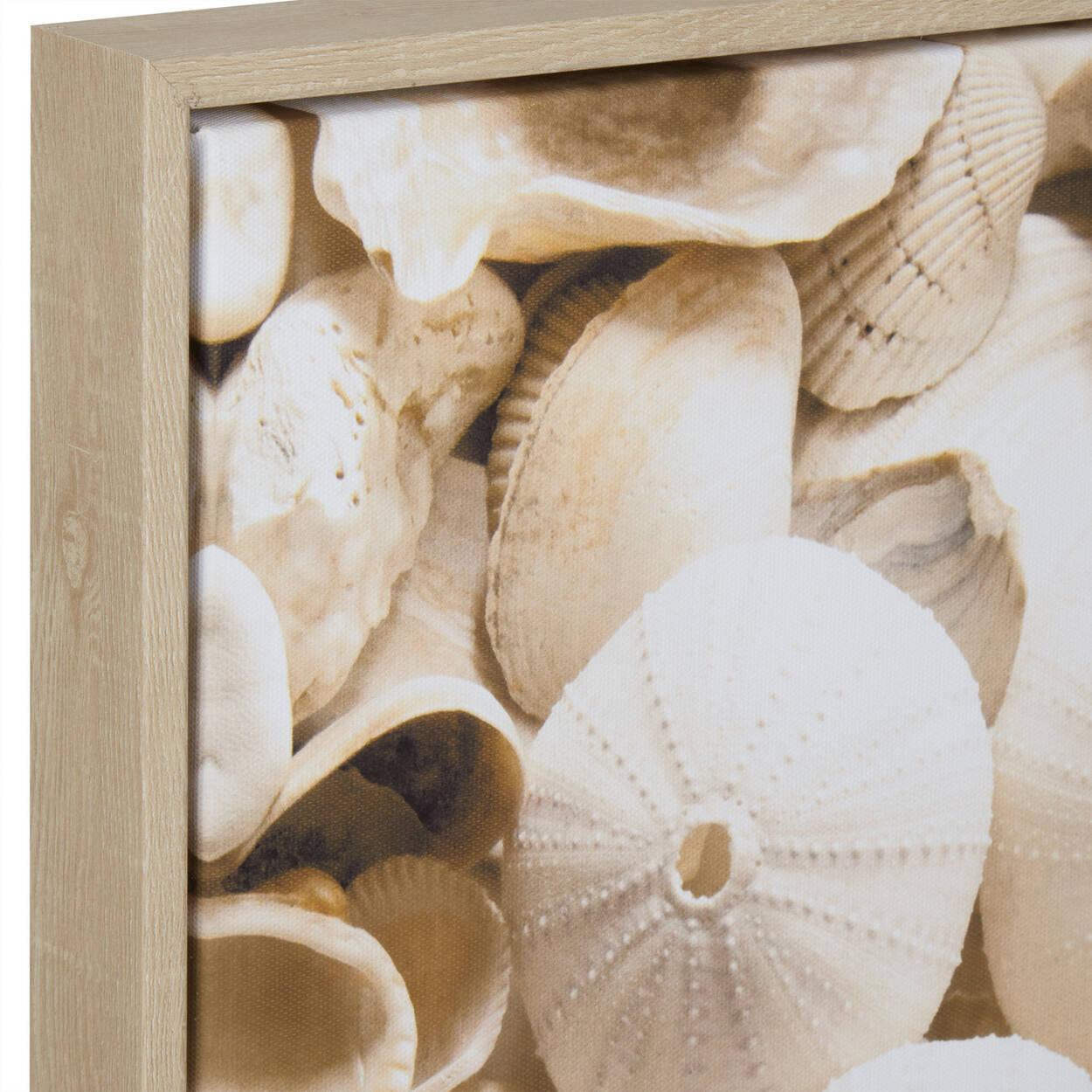 Seashells Printed Framed Art