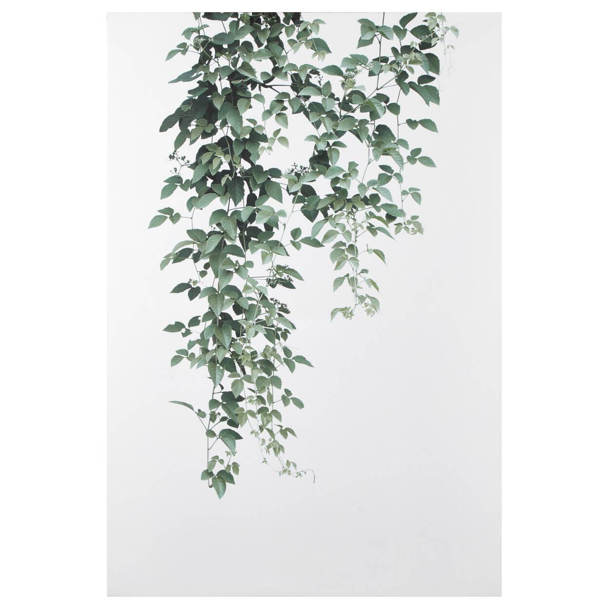 Tableau imprimé feuilles pendantes