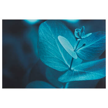Blue Eucalyptus Printed Canvas