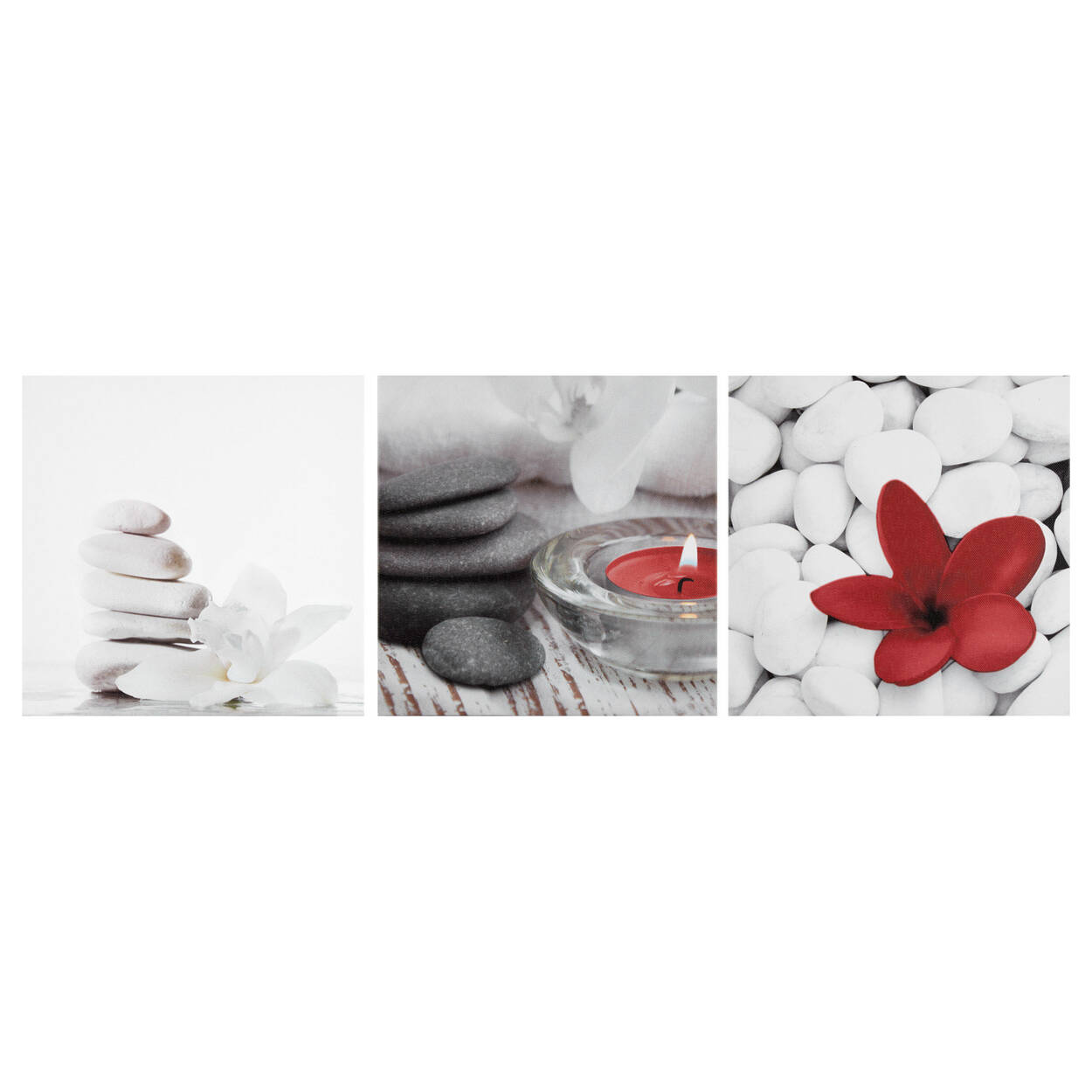 Set of 3 Flowers and Rocks Canvases