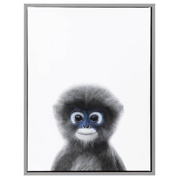 Baby Monkey Framed Art