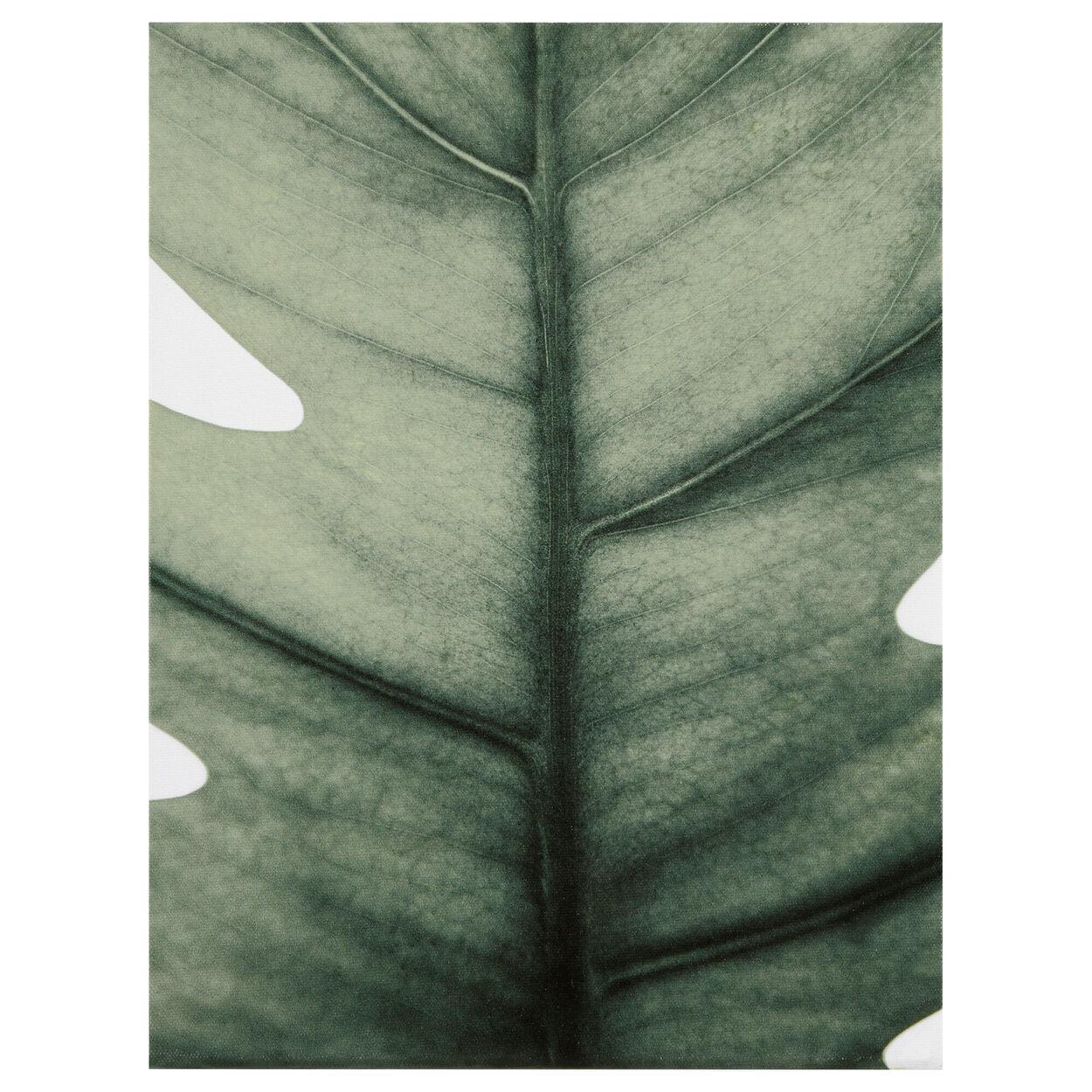 Green Leaf Printed Canvas