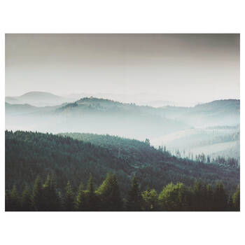 Pine Trees and Mountrains Framed Canvas