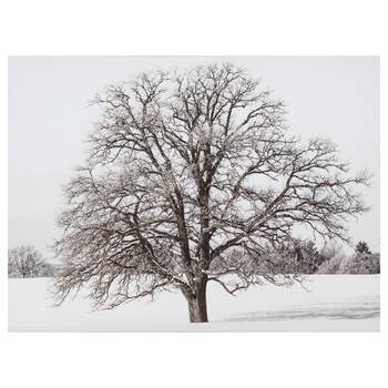 Winter Tree Printed Canvas
