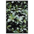 Green Foliage Printed Framed Art