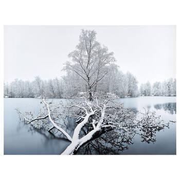 Winter Landscape Printed Canvas