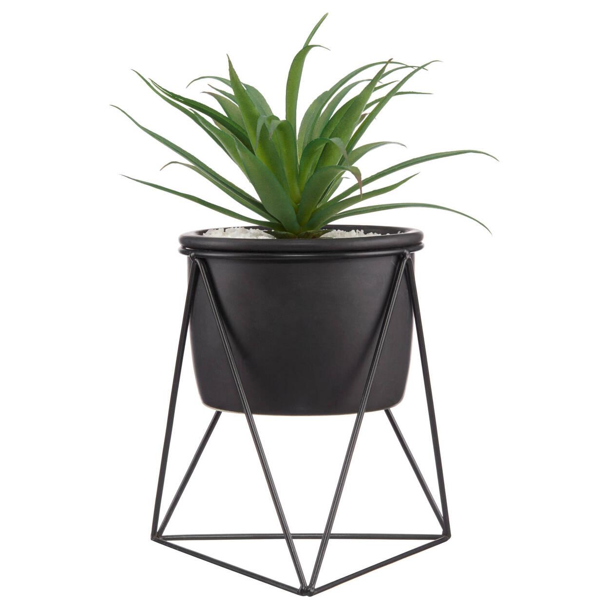 Plante sur support en métal noir géo