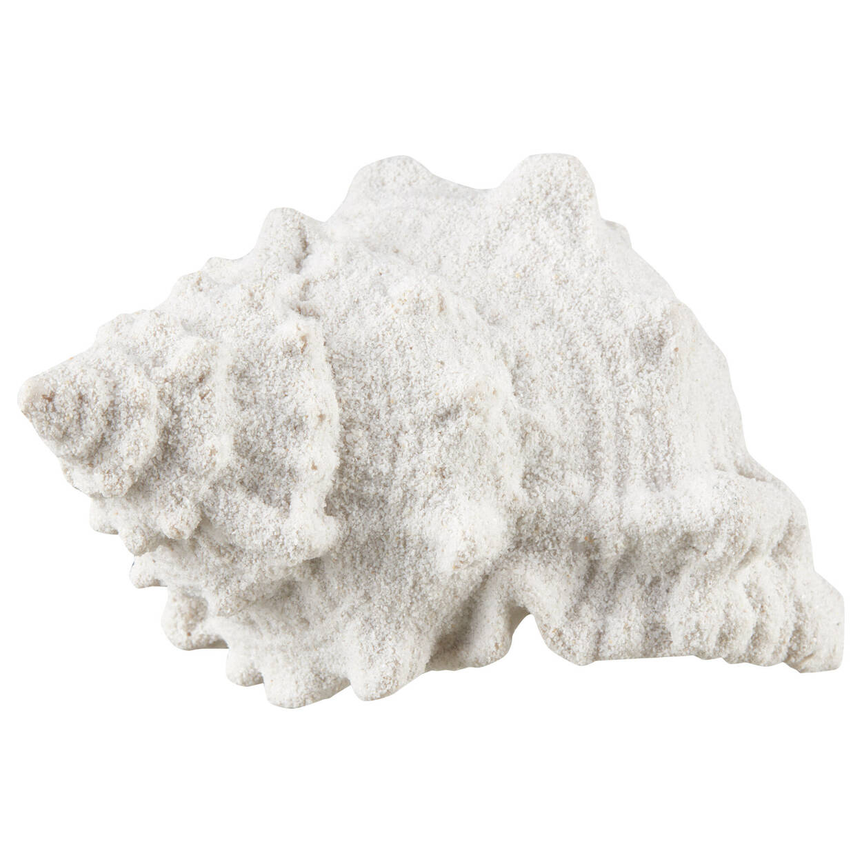 Decorative Shell