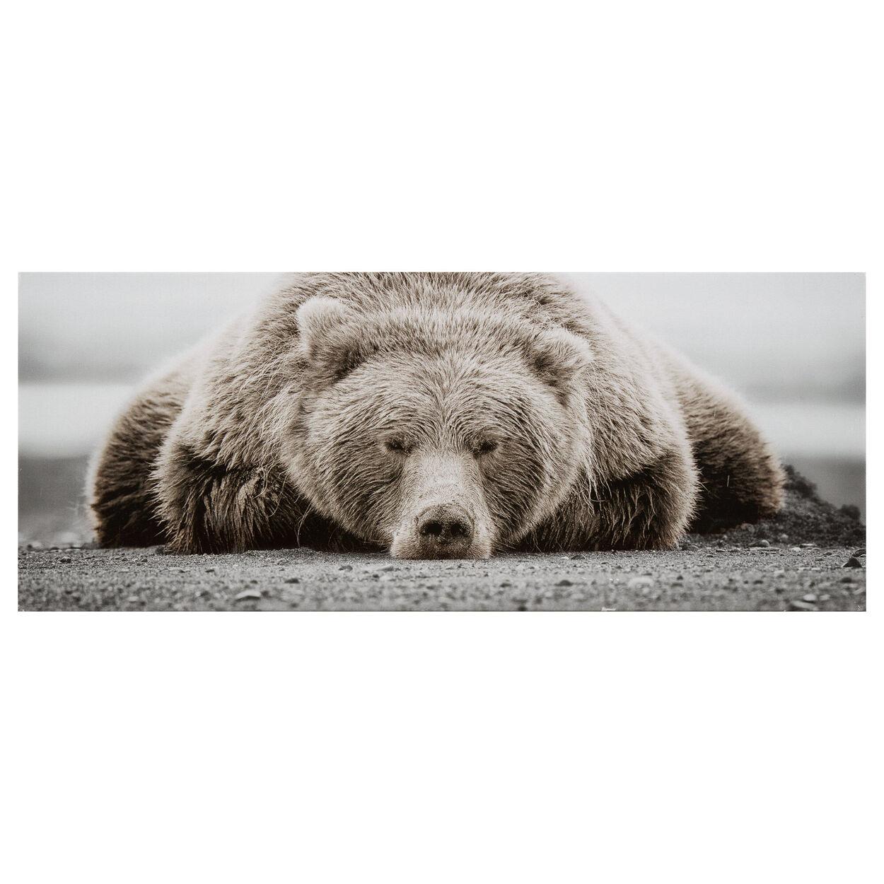 Brown Bear Small Printed Canvas