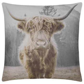 "Miles Decorative Pillow 19"" x 19"""
